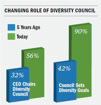 diversity council role chart