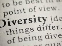 Diversity Management Definitions