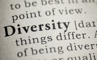 Diversity Management Definitions