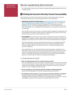 Chairing the Executive Diversity Council/Accountability