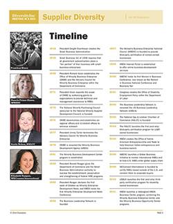 Supplier Diversity Timeline